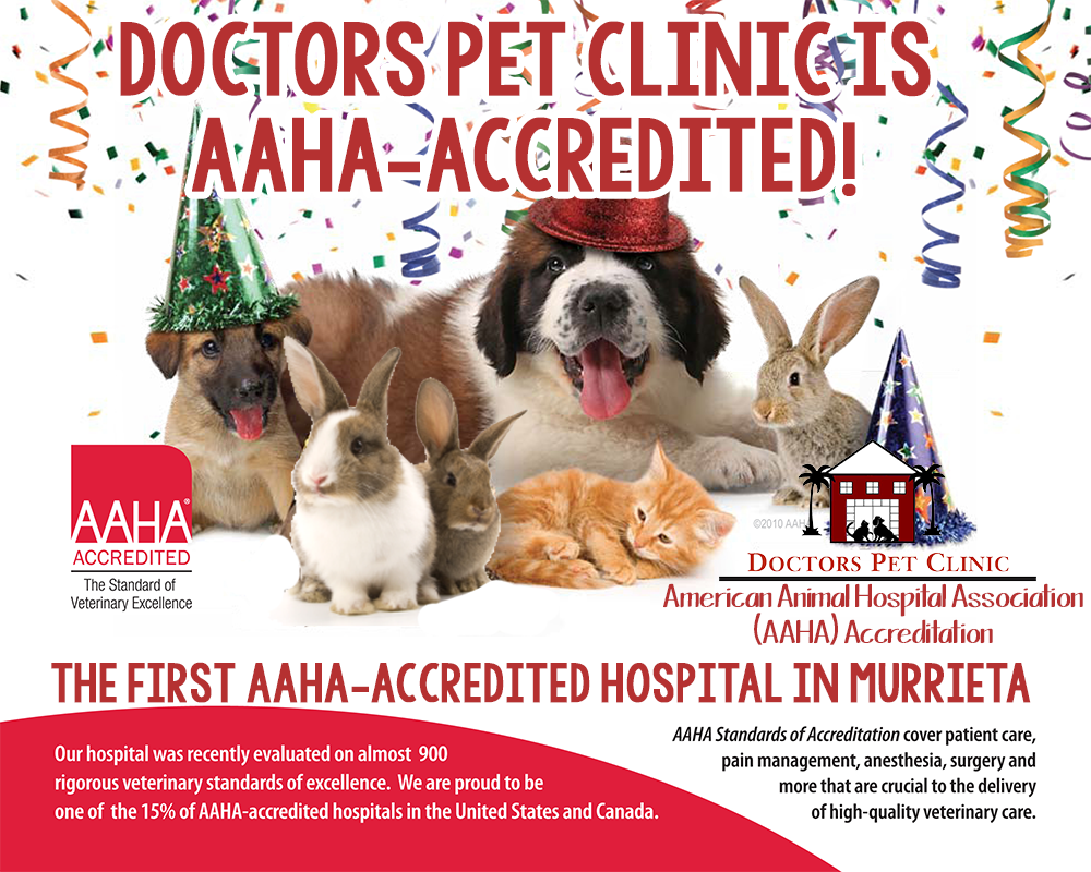 We are AAHA-Accredited!