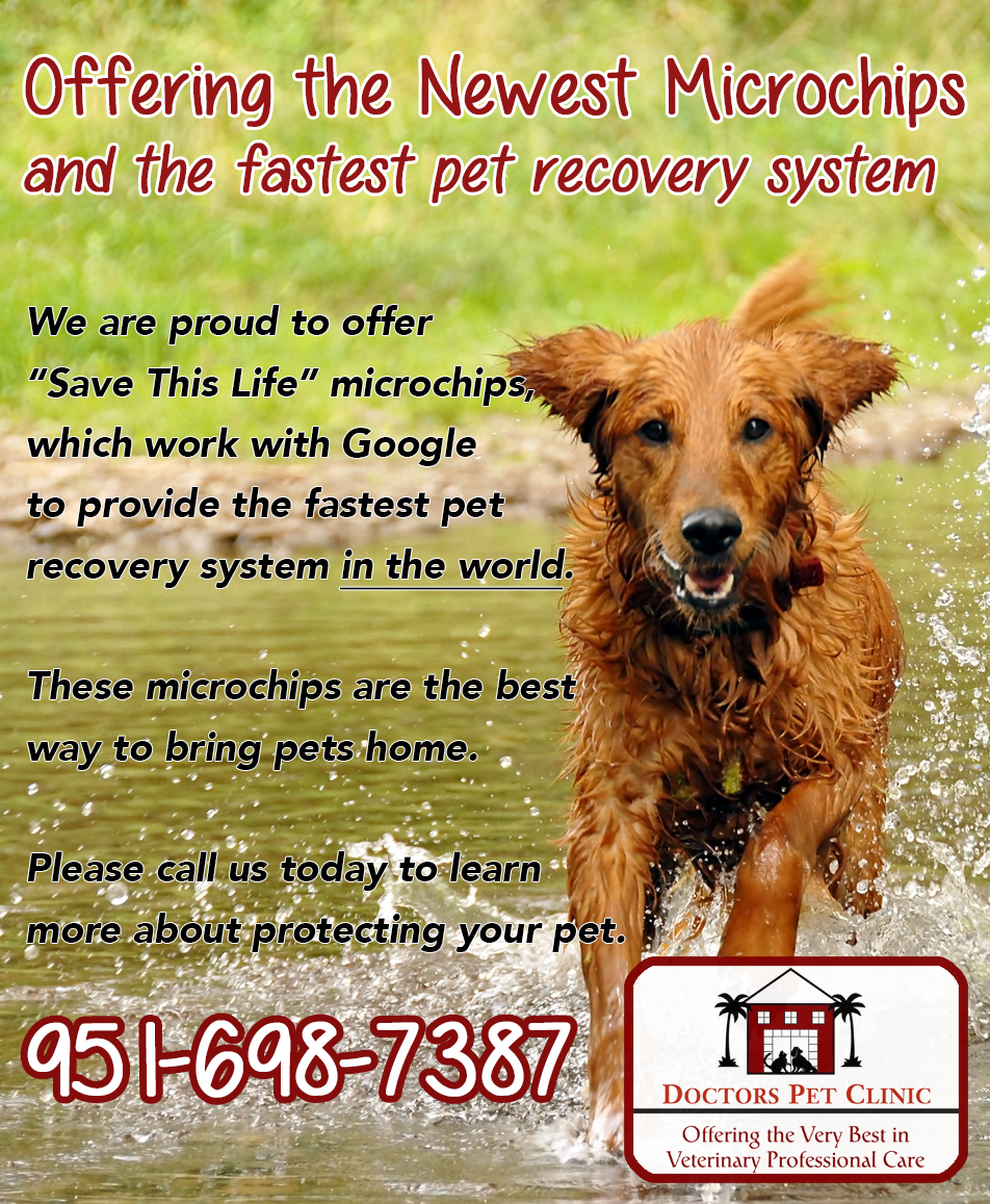 Offering the Best Microchip System